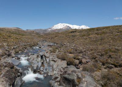 Mount Ruapehu begleitet die Wanderer ein großes Stück. Im Sommer fließt Eis des Vulkans in kleinen Bachläufen ab.