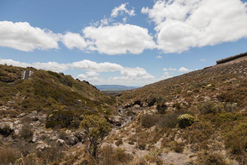 Viel Natur im Tongariro National Park