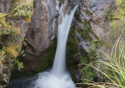 Nach dem großen Taranaki Wasserfall begleiten einen kleinere Wasserfälle auf dem Wanderweg.