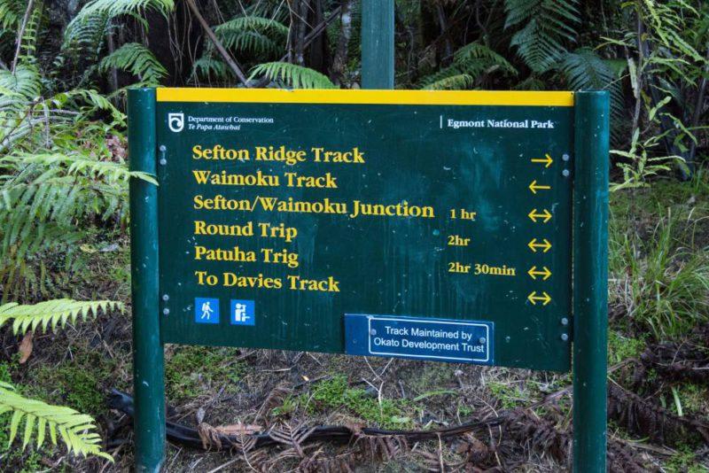 Waimoku Track, Patuha Trug, Sefton Riege Track
