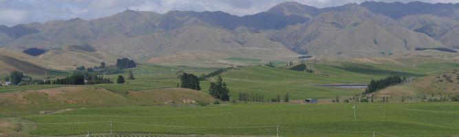 Neuseeland-Feeling – her mit dem Wein!