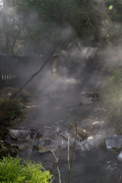 Ein dampfender Fluss im Kuirau Park