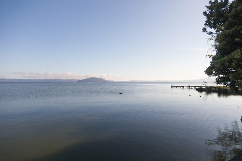 Aussicht auf den Lake Rotorua